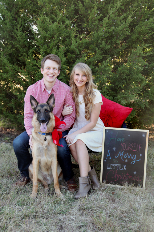 Christmas family pictures with animals , Lolly Jane