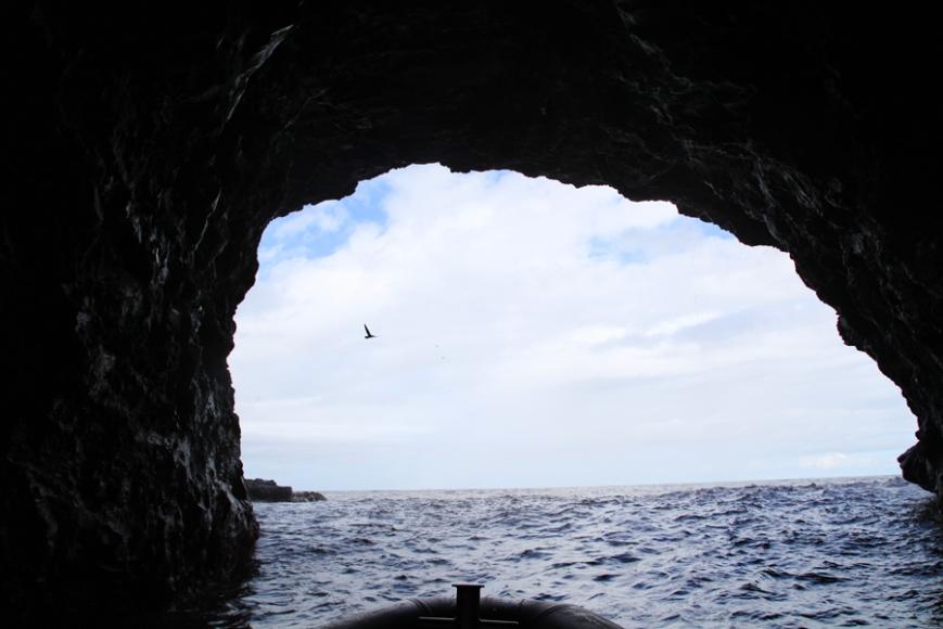 hawaii15